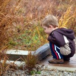 Autumn Escapades: Nature Centers