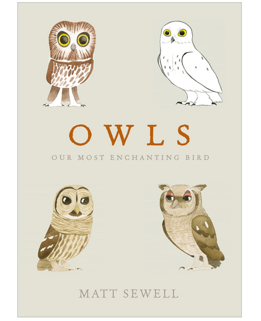 owls-cover